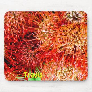 Mousepad ~ impressionante personalizado ~ do Banksia de
