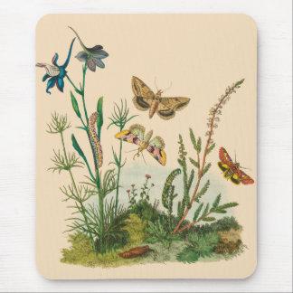 Mousepad Insetos do jardim do vintage, borboletas, lagartas