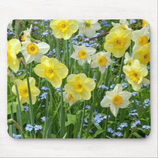 Mousepad Jardim amarelo bonito do daffodil