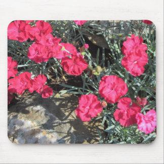 Mousepad Jardim de rocha cor-de-rosa do cravo-da-índia