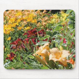 Mousepad Jardins meados de coloridos do verão!