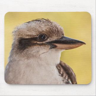 Mousepad Kookaburra