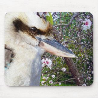 Mousepad Kookaburra ao lado da árvore da flor,