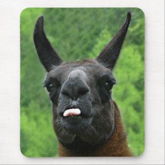 Mousepad Lama com atitude - colando para fora a foto da