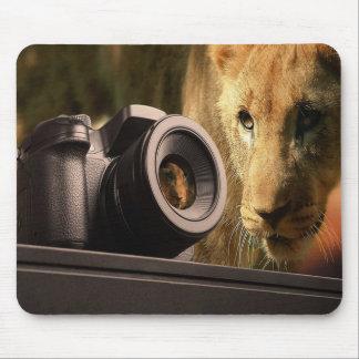 Mousepad Leão através da objectiva