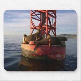 Mousepad Leões de mar que relaxam em uma bóia em Dana Point