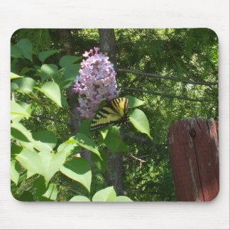 Mousepad Lilac Bush bonito e uma borboleta