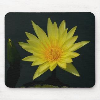 Mousepad Lotus amarelo Waterlily
