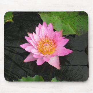 Mousepad Lotus cor-de-rosa Waterlily