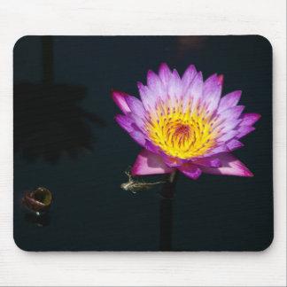 Mousepad Lotus roxo Waterlily & tapete do rato da ninfa da