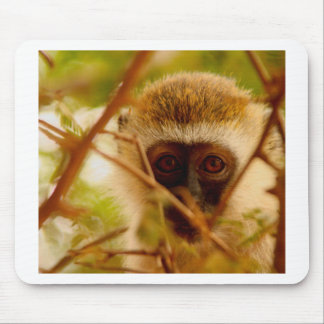 Mousepad Macaco insolente