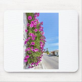 Mousepad Margaridas espanholas cor-de-rosa de suspensão na