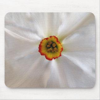 Mousepad narciso do branco da pérola