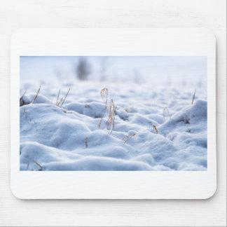 Mousepad Neve em um prado no macro do inverno