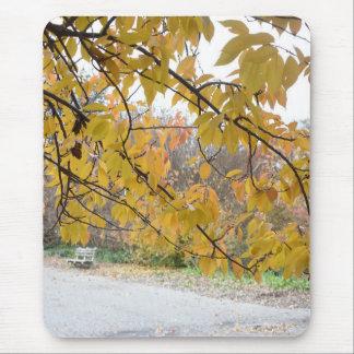 Mousepad Nova Iorque NYC do parque do beira-rio das folhas