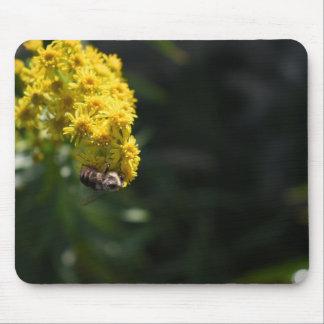 Mousepad O amarelo floresce a fotografia da natureza do