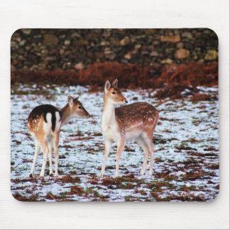 Mousepad O casal (cervos)