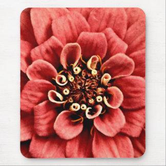 Mousepad o detalhe cor-de-rosa do zinnia é animador mas não