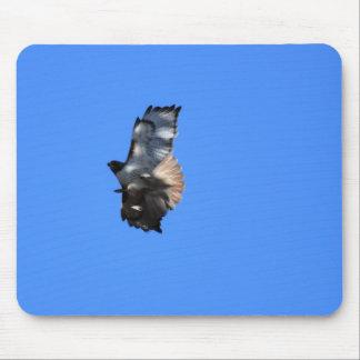 Mousepad O falcão atado vermelho entra para uma aterragem