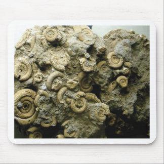 Mousepad o fóssil descasca a arte