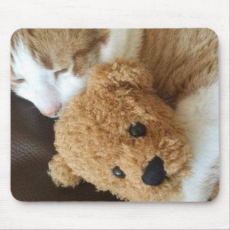 Mousepad O gato guardara o urso de ursinho velho