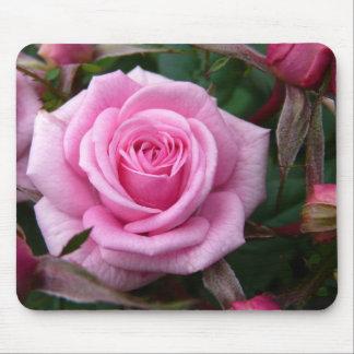 Mousepad O rosa floresce presentes da decoração da rosa