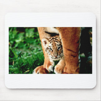 Mousepad O tigre Cub de Bengal espreita para fora