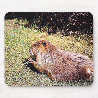 Mousepad Oregon o estado do castor