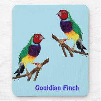 Mousepad ~ original da arte do ~ do passarinho de Gouldian