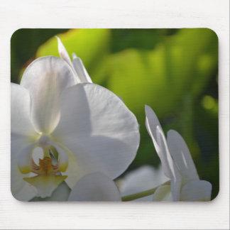 Mousepad Orquídeas