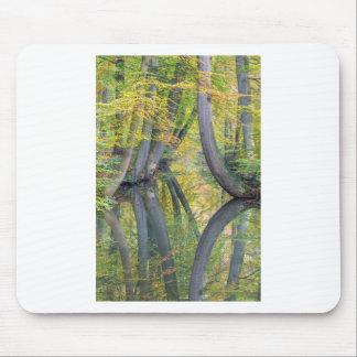 Mousepad Os troncos de árvore da queda com reflexão na