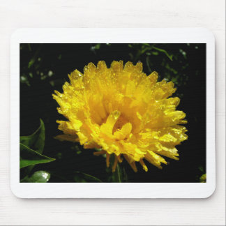 Mousepad Ouro do Calendula