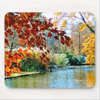 Mousepad Outono colorido na água