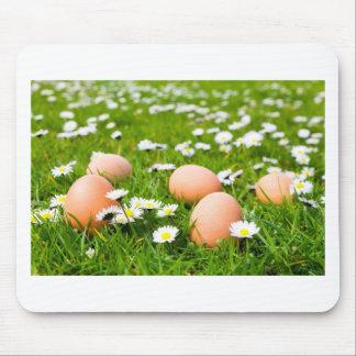Mousepad Ovos da galinha na grama com margaridas