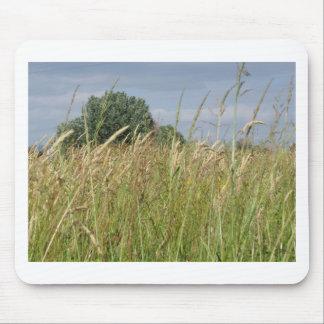 Mousepad Paisagem do verão do campo selvagem no campo