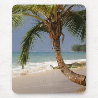 Mousepad palmeira exótica na praia