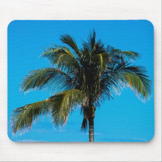 Mousepad Palmeira tropical