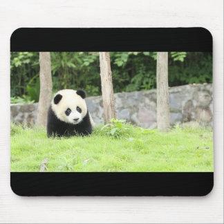 Mousepad Panda do bebê
