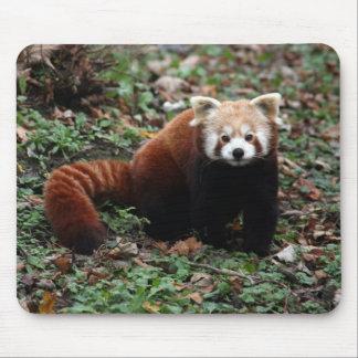 Mousepad Panda vermelha