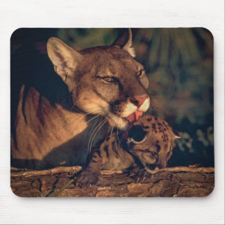 Mousepad Pantera de Florida que lambe Cub