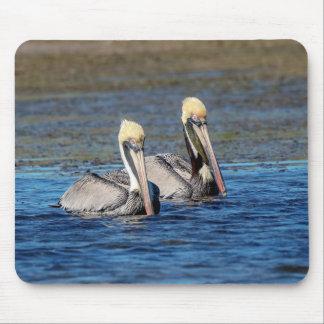 Mousepad Pares de pelicanos