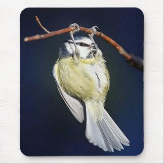 Mousepad Pássaro