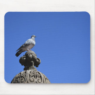 Mousepad Pássaro da Nova Iorque do céu azul do pombo do