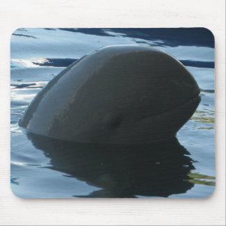 Mousepad Peekaboo do golfinho de Irrawaddy