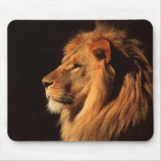 Mousepad Perfil masculino do leão - imagens dos animais