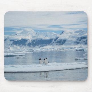 Mousepad Pinguins em um iceberg