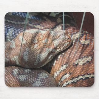 Mousepad Pitão do tapete de Centralian