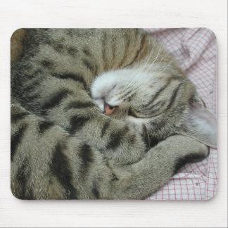 Mousepad Posição inábil do sono do gato