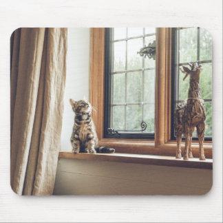 Mousepad Quanto é esse gatinho na janela?