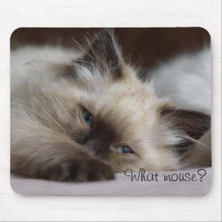 Mousepad Que rato, tapete do rato